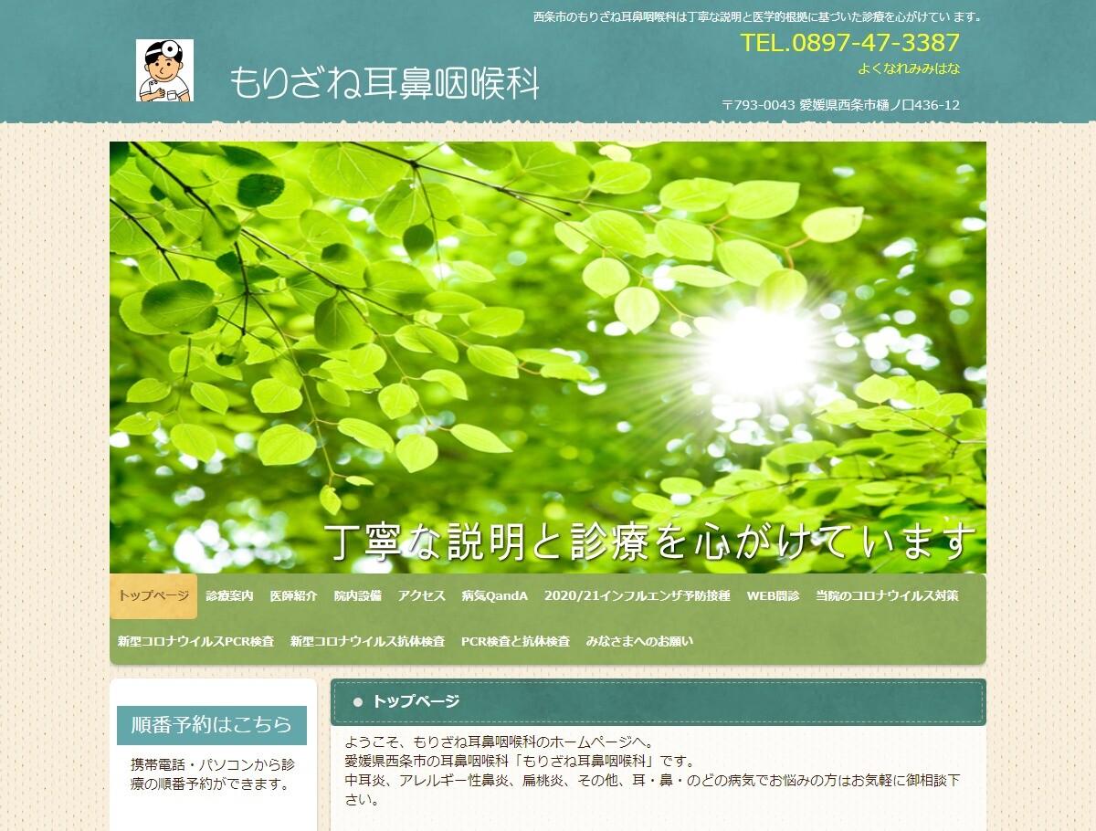 もりざね耳鼻咽喉科(愛媛県)
